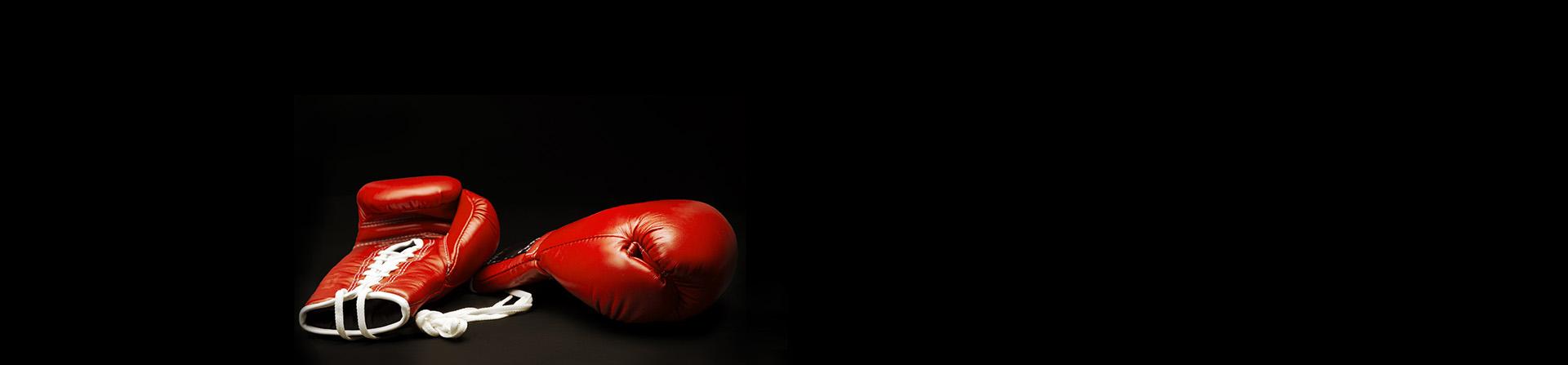 BA_DAPS_Kick boxing_M Benmadil_2018.jpg